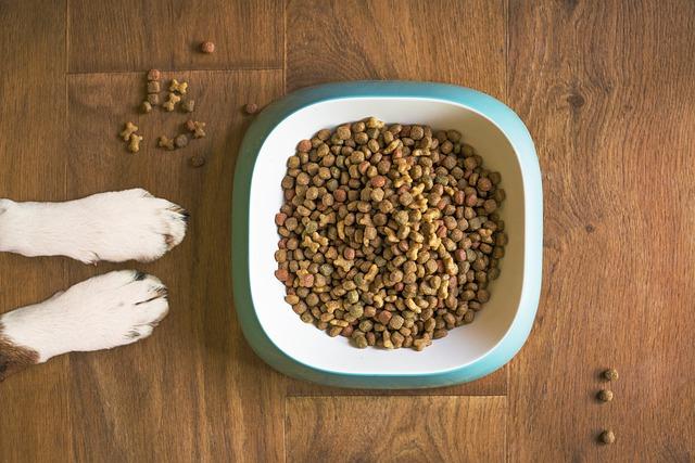 Какие продукты нельзя давать кошке